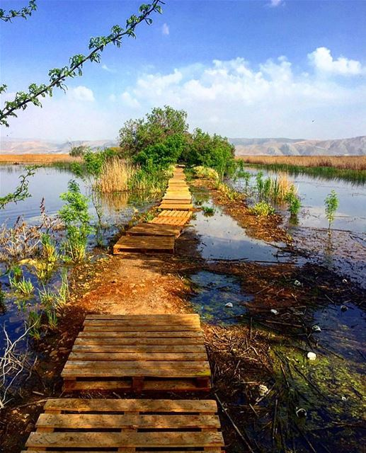 Beauty is around the corner everywhere you go in  lebanon 🍃🌿🇱🇧🌿🍃... (`Ammiq, Béqaa, Lebanon)